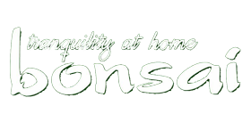 Bonsai – Tranquility at Home